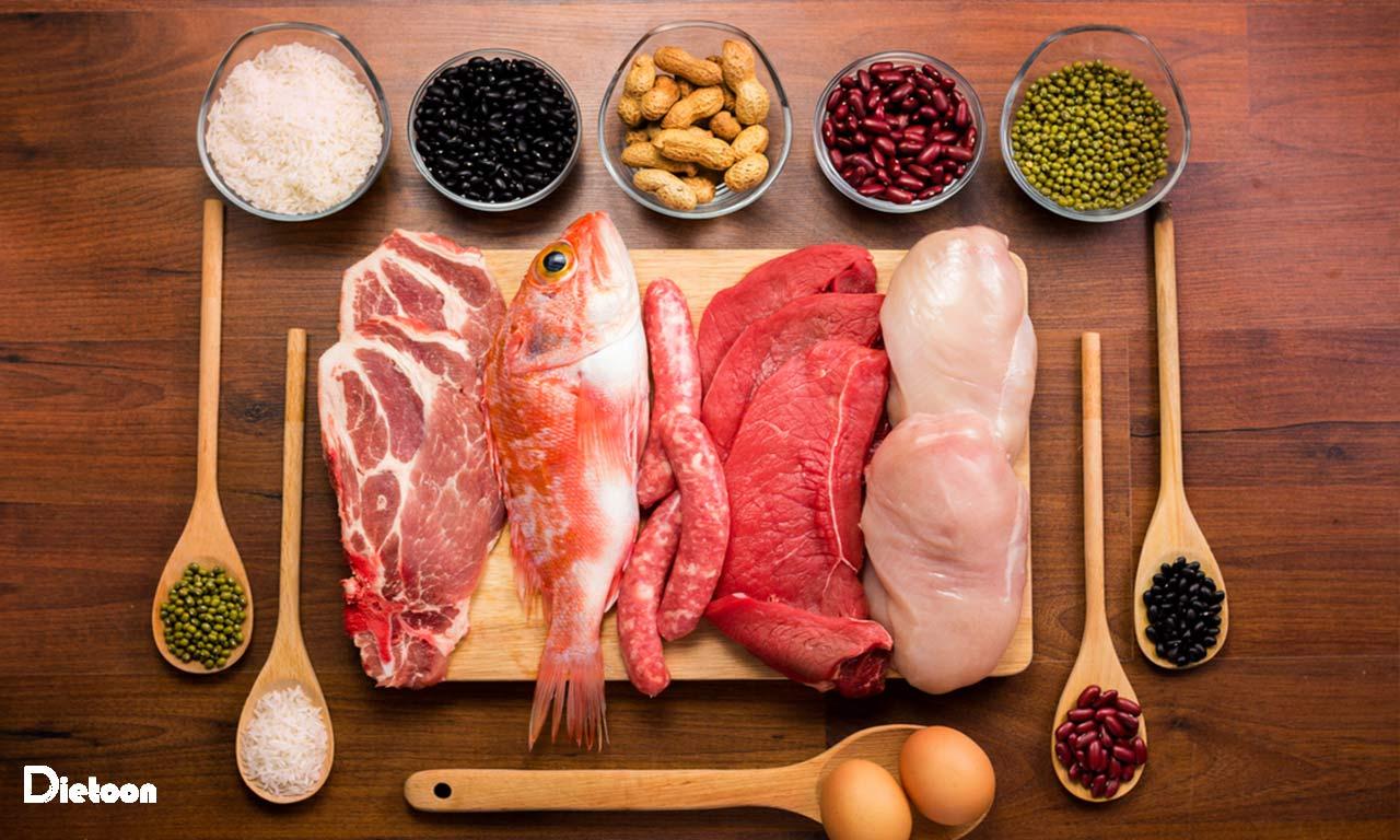 انواع مختلف گوشت