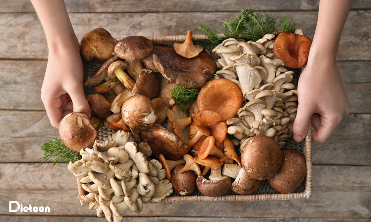 قارچ ها و ویتامین های مورد نیاز بدن