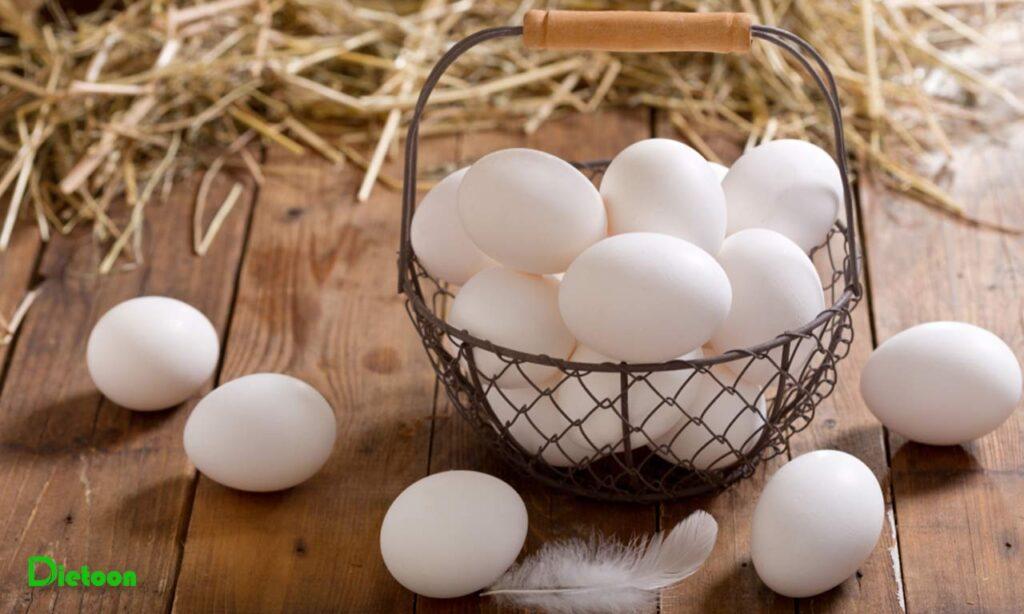 تخم مرغ از دیدگاه مفید یا مضر بودن