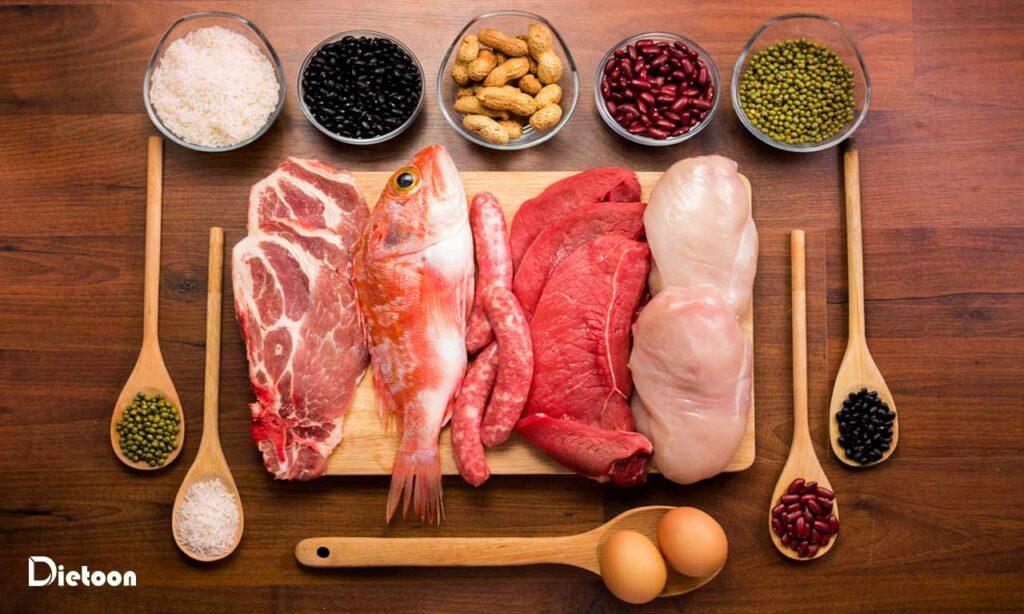 کدام مواد پروتئینی را به چه میزان مصرف کنیم